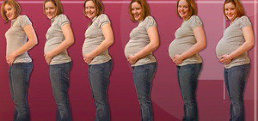 Як росте живіт при вагітності