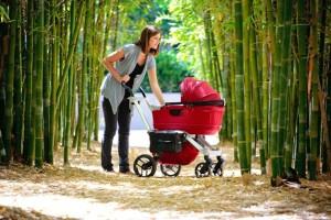 Коли можна гуляти з новонародженим