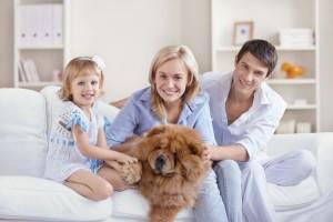 Затишок і комфорт головні джерела сімейного щастя