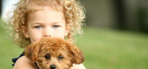 Якщо малюк хоче завести собаку