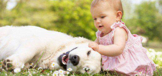 Тваринка для вашої дитини. Плюси і мінуси